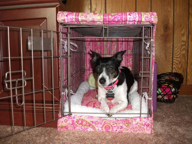 Diy Crate Cover Amp Bed Petdiys Com
