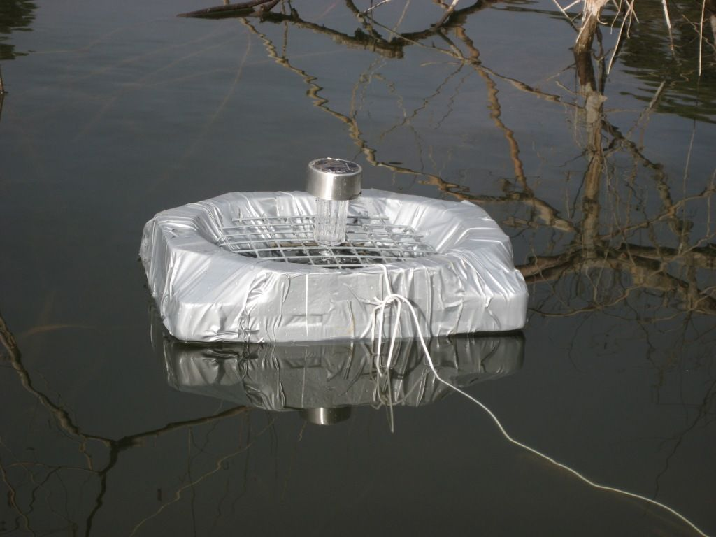Diy solar powered pond feeder for Fish feeders for ponds