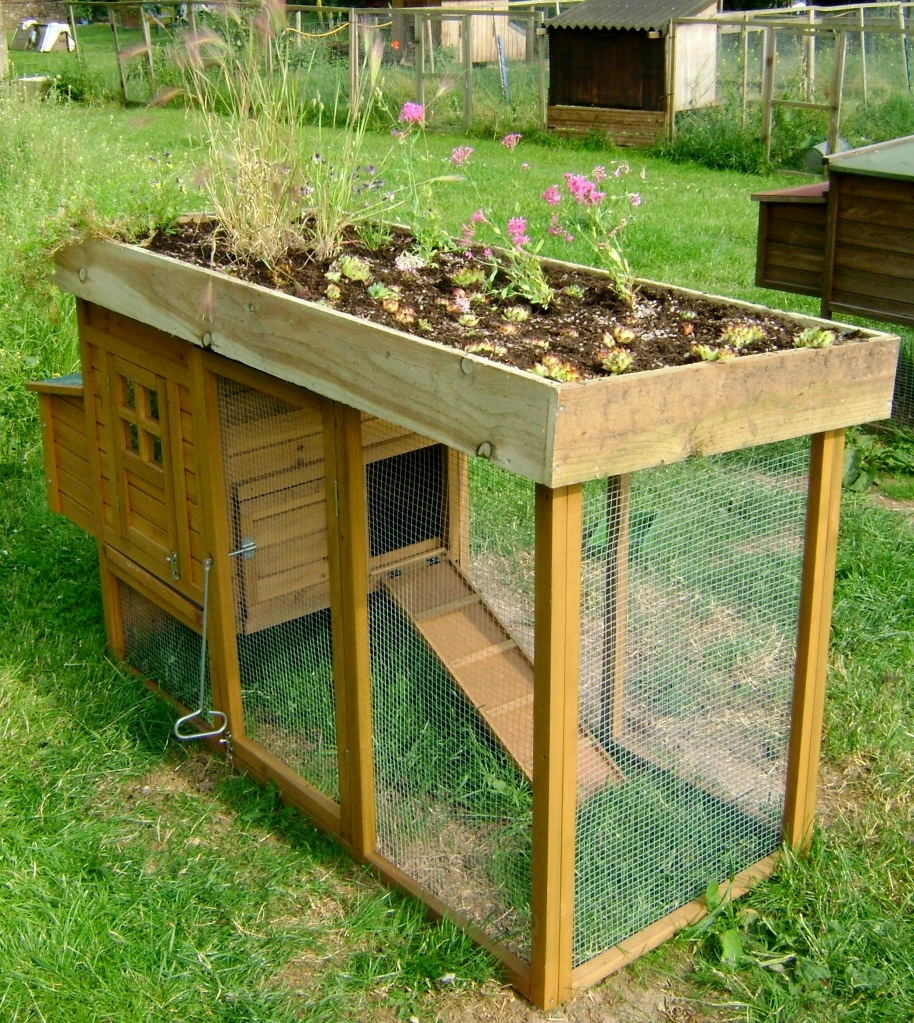 Door chicken coop diy green roof chicken coop for Diy chicken coop