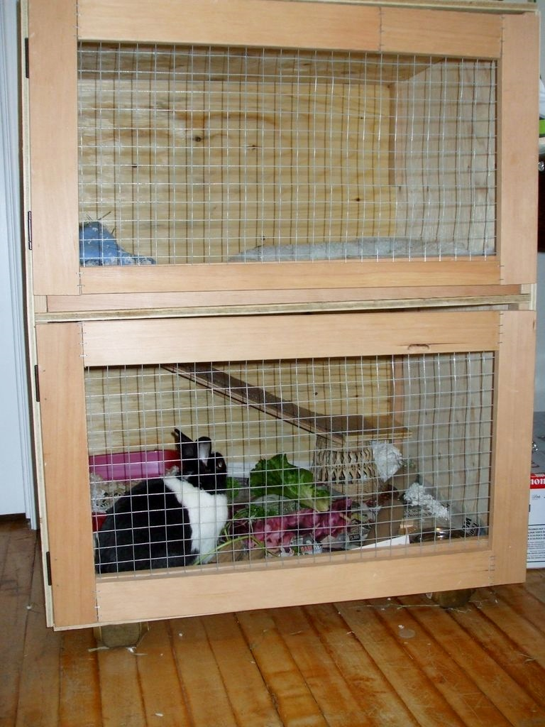 Diy Two Story Rabbit Hutch Plans